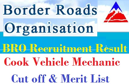 BRO Cook Vehicle Mechanic Result 2020